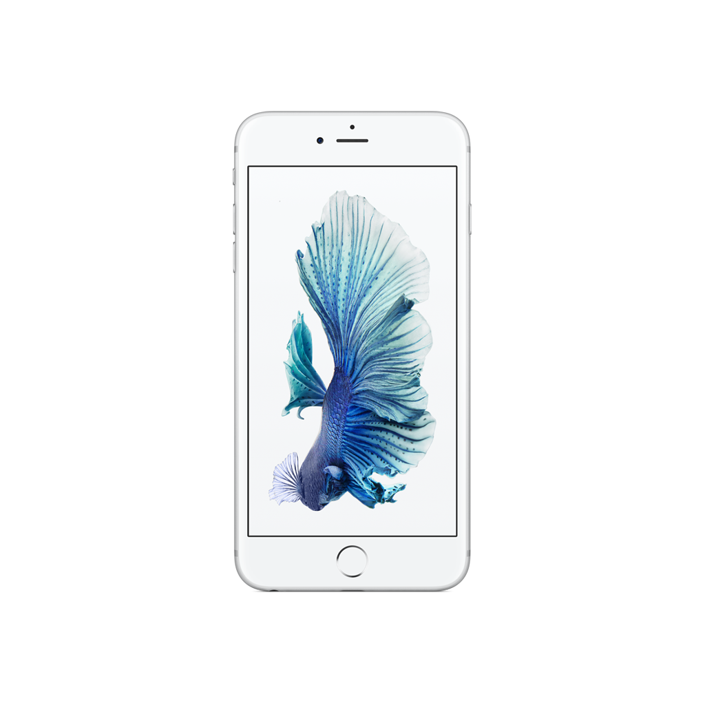 iPhone 6 Plus Silver - trangthienlong.com.vn